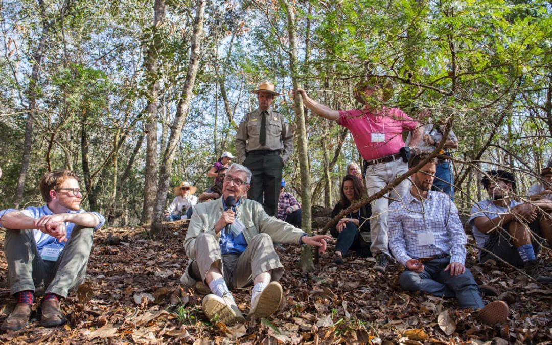 For Endangered Florida Tree, How Far to Go to Save a Species?